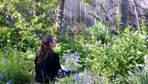 visitor_garden_01